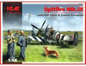 Spitfire Mk.IX with RAF pilots and ground personnel