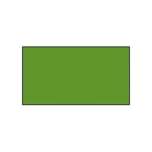 Краска матовая, цвет «Средне-зелёный», 16мл